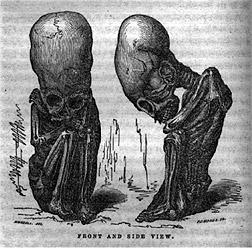 Descubren en Florida un bebé momificado fallecido en los años 50