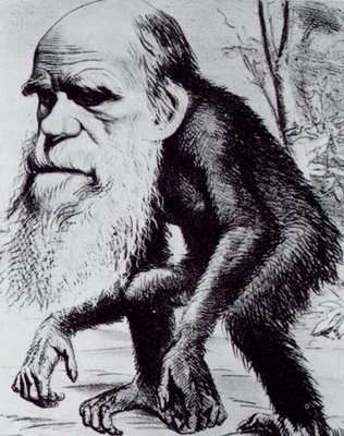 La Iglesia debate sobre Darwin